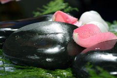 Rose petals and pebble. Nice and fresh pink rose petal and natural pebbles on the flower background. Suitable for spa and relaxation setting Stock Photography