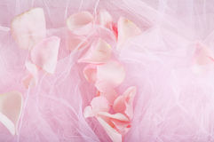 Rose petals on pink fabric Stock Photography