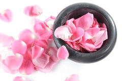 Rose petals. Pink roses in mortar and rose petals on white background Royalty Free Stock Images