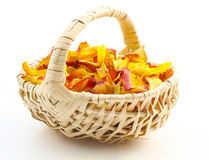 Rose petals, potpourri Royalty Free Stock Photography