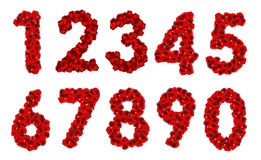 Rose Petals Realistic Number Vector-Illustratie Stock Foto's
