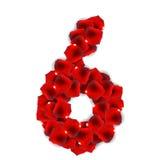 Rose Petals Realistic Number Vector illustration Royaltyfria Bilder