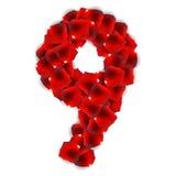 Rose Petals Realistic Number Vector illustration Royaltyfria Foton
