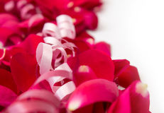 Rose petals with ribbons Royalty Free Stock Photo