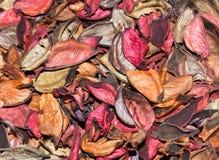 Rose Petals sèche Photo libre de droits