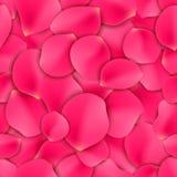 Rose Petals Seamless Pattern Royalty Free Stock Photos