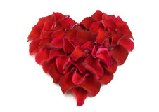 Rose petals in a shape of a heart Stock Images