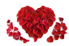 Rose petals in a shape of a heart Royalty Free Stock Photo