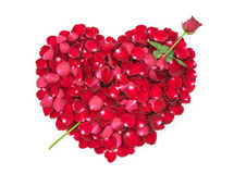 Rose petals in a shape of a heart with Rose Arrow.  Stock Photography