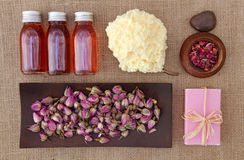 Rose petals spa Royalty Free Stock Photo