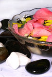 Rose petals and spa Royalty Free Stock Photography