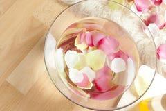Rose petals spa stock image