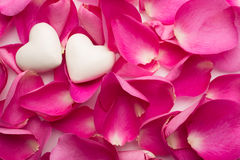 Rose petals. Royalty Free Stock Photography