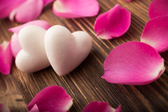 Rose petals. Royalty Free Stock Photo