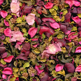 Rose petals texture to background Royalty Free Stock Photos