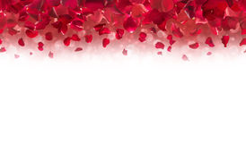 Rose Petals Top Border vermelha Fotografia de Stock Royalty Free