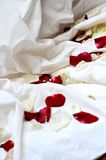 Rose petals on  wedding dress Royalty Free Stock Image