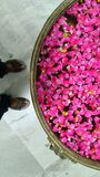 Rose petals. Welcome in a copper vessel full of rose petals royalty free stock image
