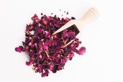 Rose petals Stock Image