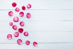Rose petals on white wooden. Background stock photo