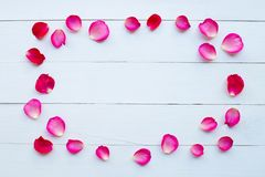 Rose petals on white wooden. Background royalty free stock photography