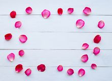 Rose petals on white wooden royalty free stock photo