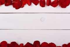 Rose petals on white wooden table. Texture Royalty Free Stock Image