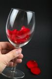 Rose petals in a wine glass Stock Photography