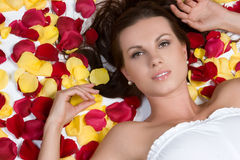 Rose Petals Woman stock images