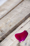 Rose petals on a wood Royalty Free Stock Images