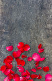 Rose Petals on a wooden Royalty Free Stock Photo