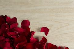 Rose petals on wooden table. Close-up of rose petals on wooden table stock photo