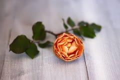 Rose photo Royalty Free Stock Image
