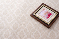 Rose photo in frame Stock Image