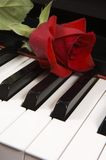 Rose on piano Stock Photo