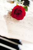 Rose and piano Stock Photos