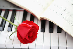 Rose on piano Stock Image