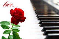 Rose. And piano, love beautiful background Royalty Free Stock Images