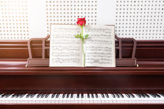 Rose on piano in room ,selective focus. music and piano concept.  Royalty Free Stock Images