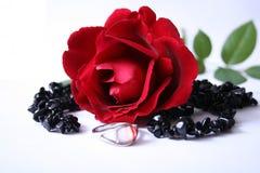 rose pierścionek fotografia stock