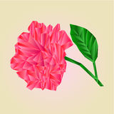 Rose pink blossoms stem with leaves polygons vector Royalty Free Stock Photo
