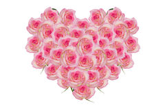 Rose pink flowers of the heart. Detail of valentine background made of pink rose petals Stock Images
