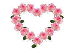 Rose pink flowers of the heart. Detail of valentine background made of pink rose petals Royalty Free Stock Image