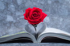 Rose placed on the books page that is bent into a heart shape Royalty Free Stock Image