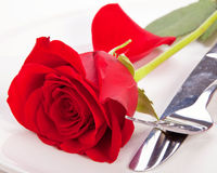 Rose in a plate. Closeup of red rose and cutlery on white plate Royalty Free Stock Photo
