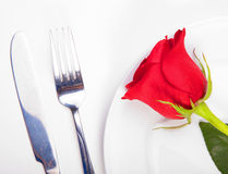 Rose in a plate. Closeup of red rose and cutlery on white plate Stock Images