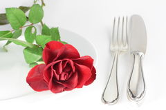 Rose on a plate. With a fork and a knife Royalty Free Stock Photo