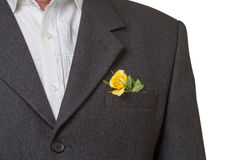 Rose in the pocket. Yellow rose in breast pocket of a groom Royalty Free Stock Image