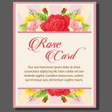 Rose poster Stock Photos