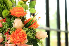 Rose pot. In home close up Royalty Free Stock Photo